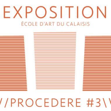 Présentation des travaux de la Classe Préparatoire aux écoles supérieures d'art – PROCEDERE #3 – du 02/03 au 22/03/19