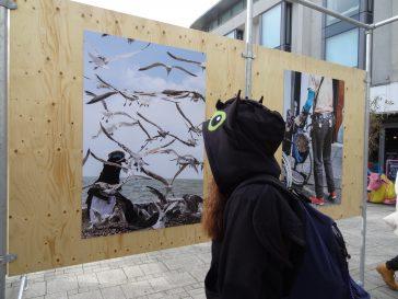 Biennale de la photo, Brighton